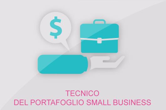 TECNICO-DEL-PORTAFOGLIO-SMALL-BUSINESS